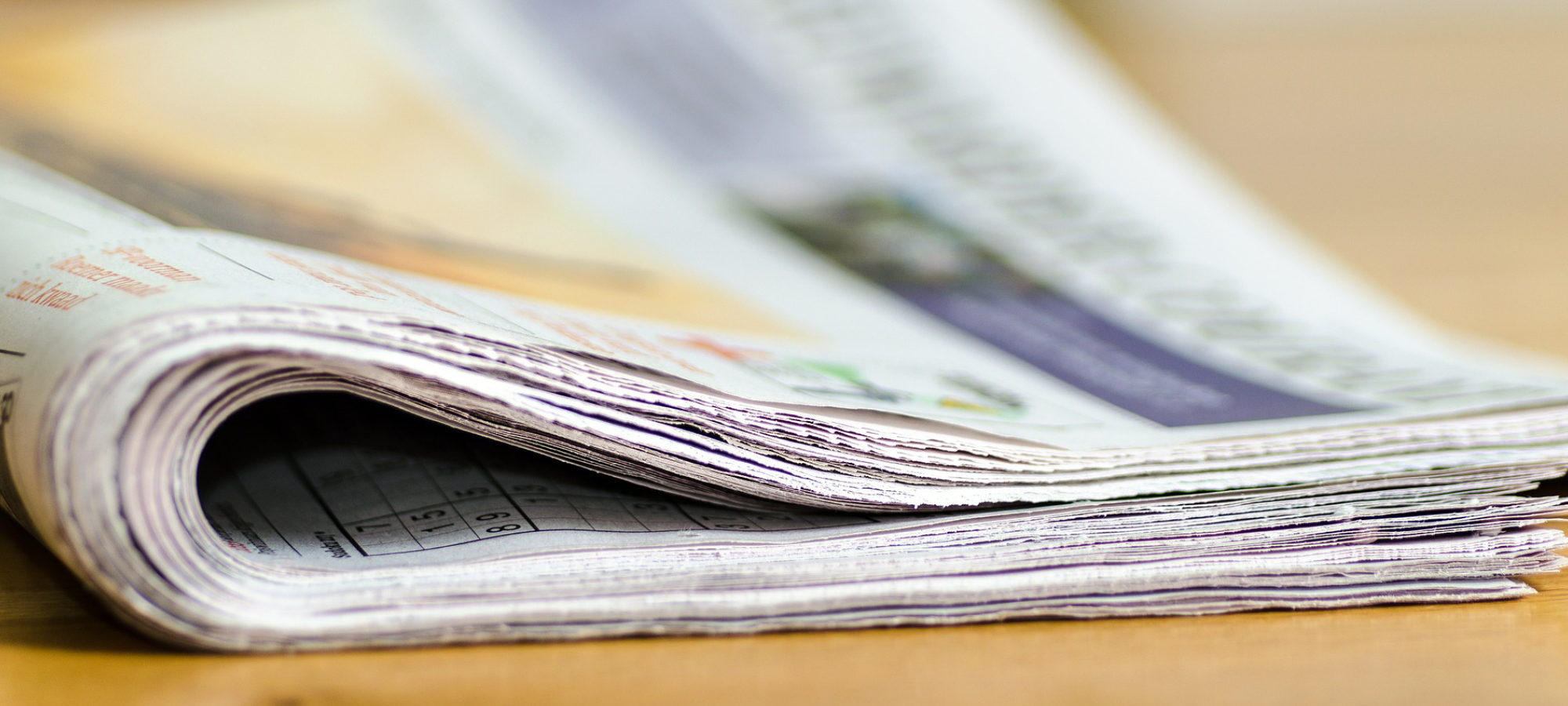 Newsbereich